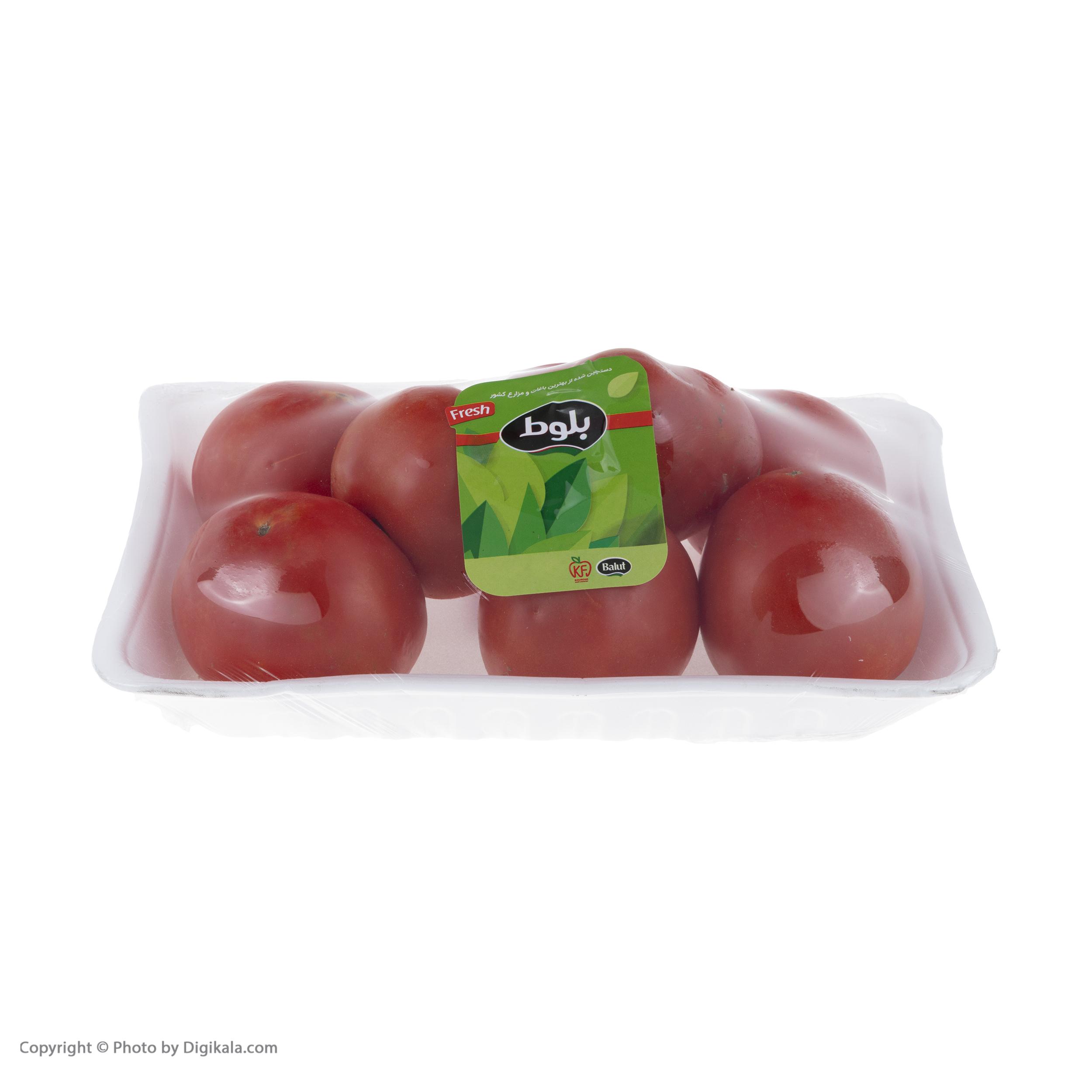 گوجه فرنگی بوته ای متین بلوط - 1 کیلوگرم  main 1 5