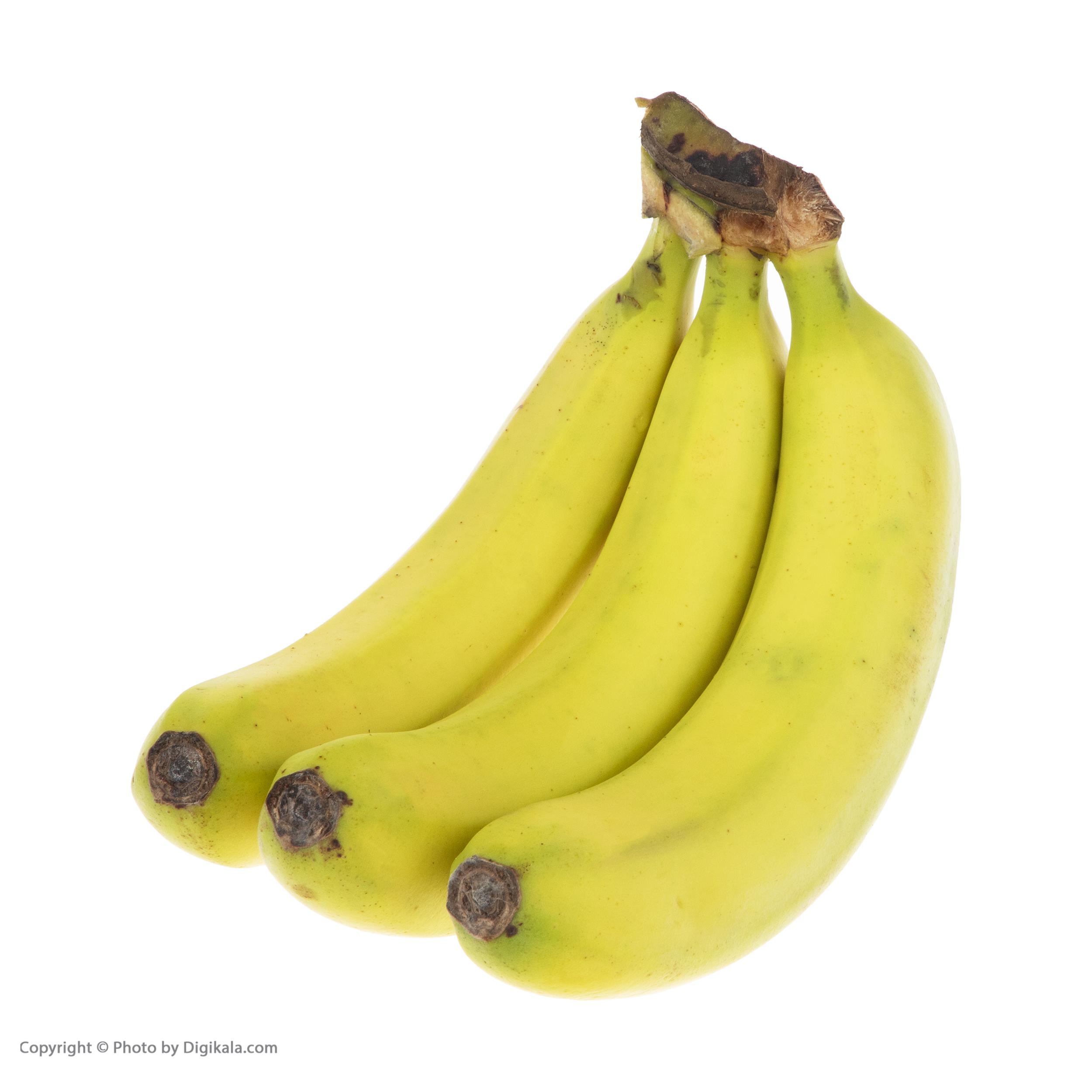 موز ارگانیک رضوانی – 1 کیلوگرم