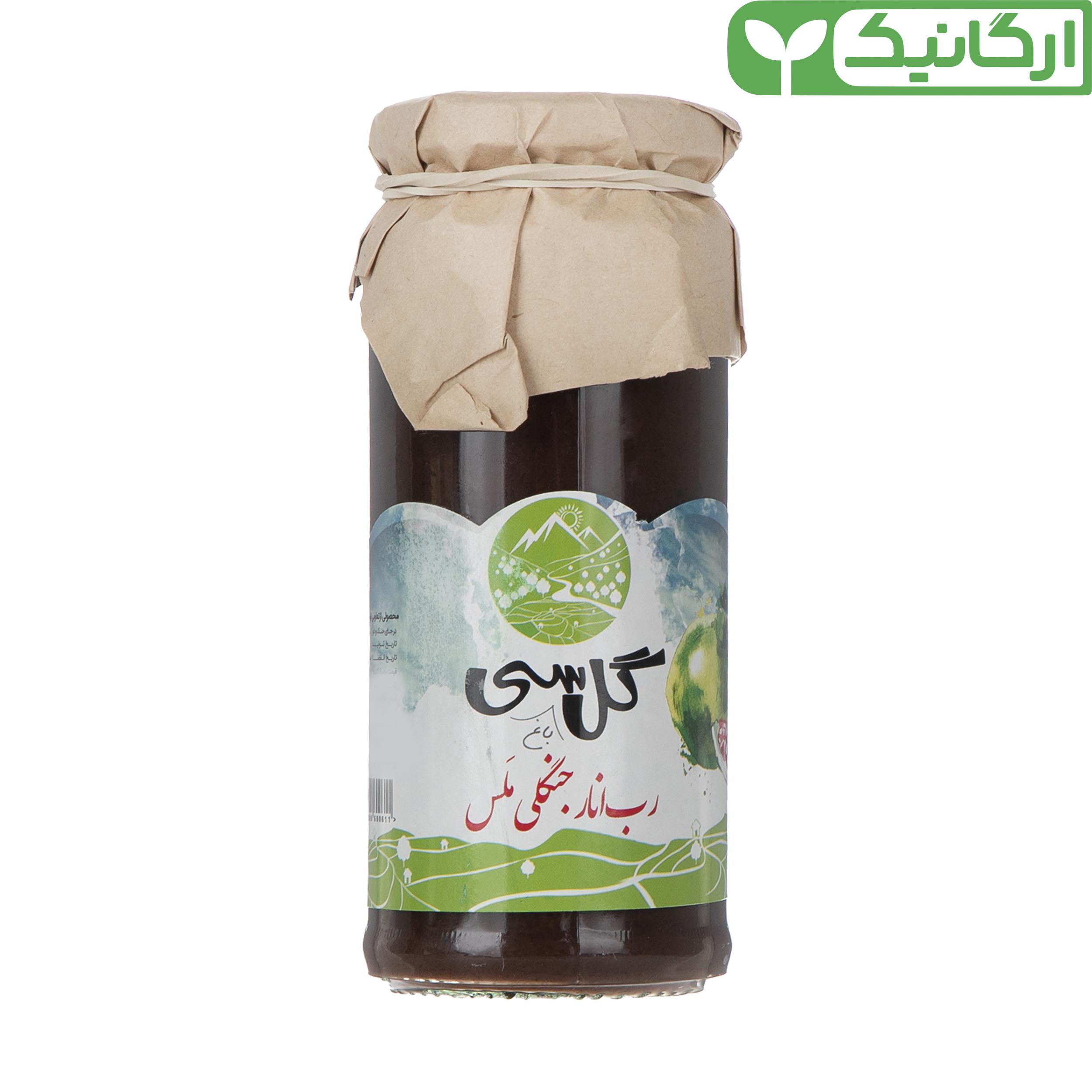 رب انار جنگلی ملس ارگانیک گل باغ سی - 500 گرم