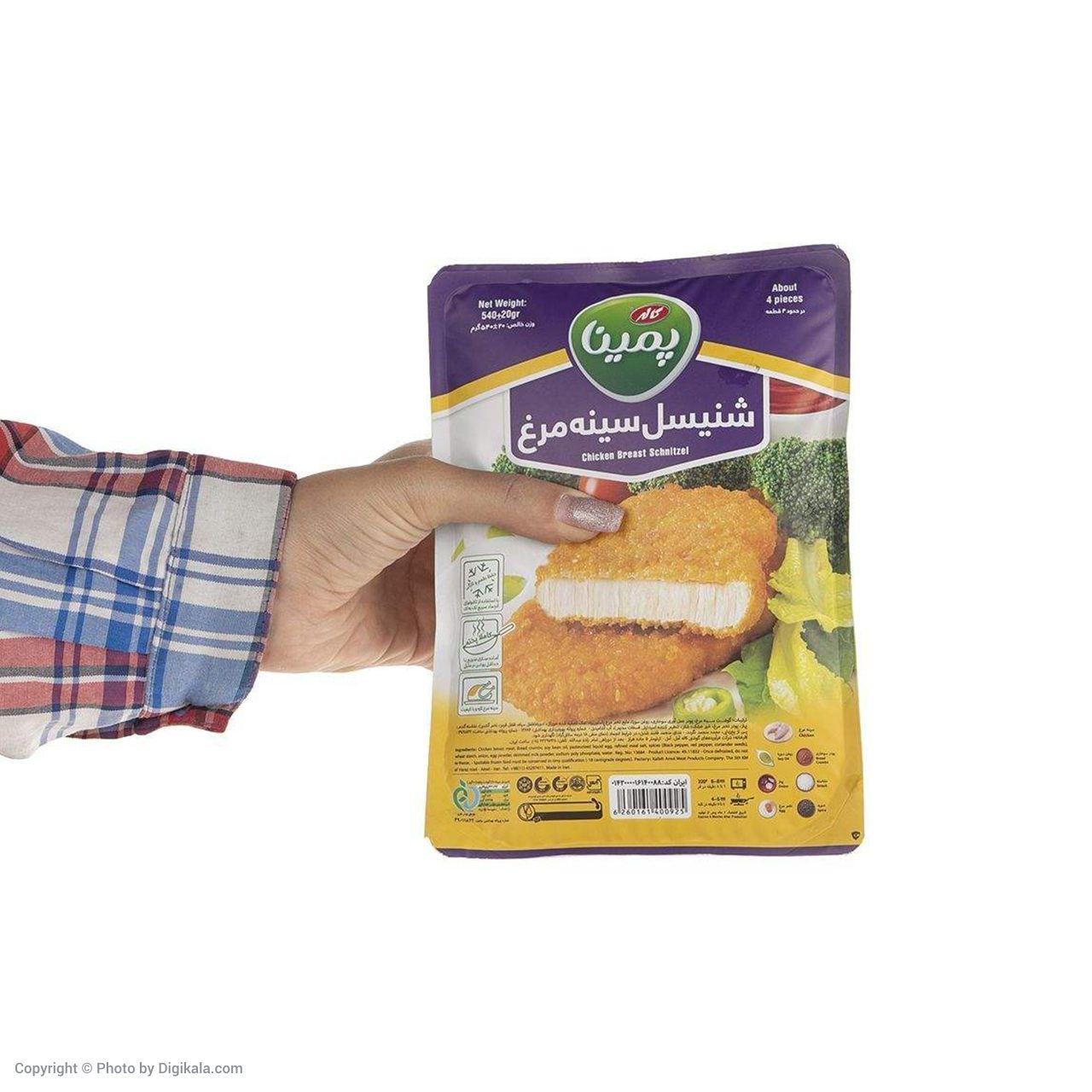 شنیسل سینه مرغ منجمد پمینا مقدار 540 گرم main 1 3