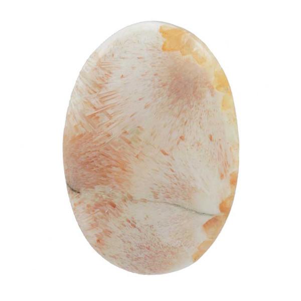 سنگ اسکولسیت کد TG5924