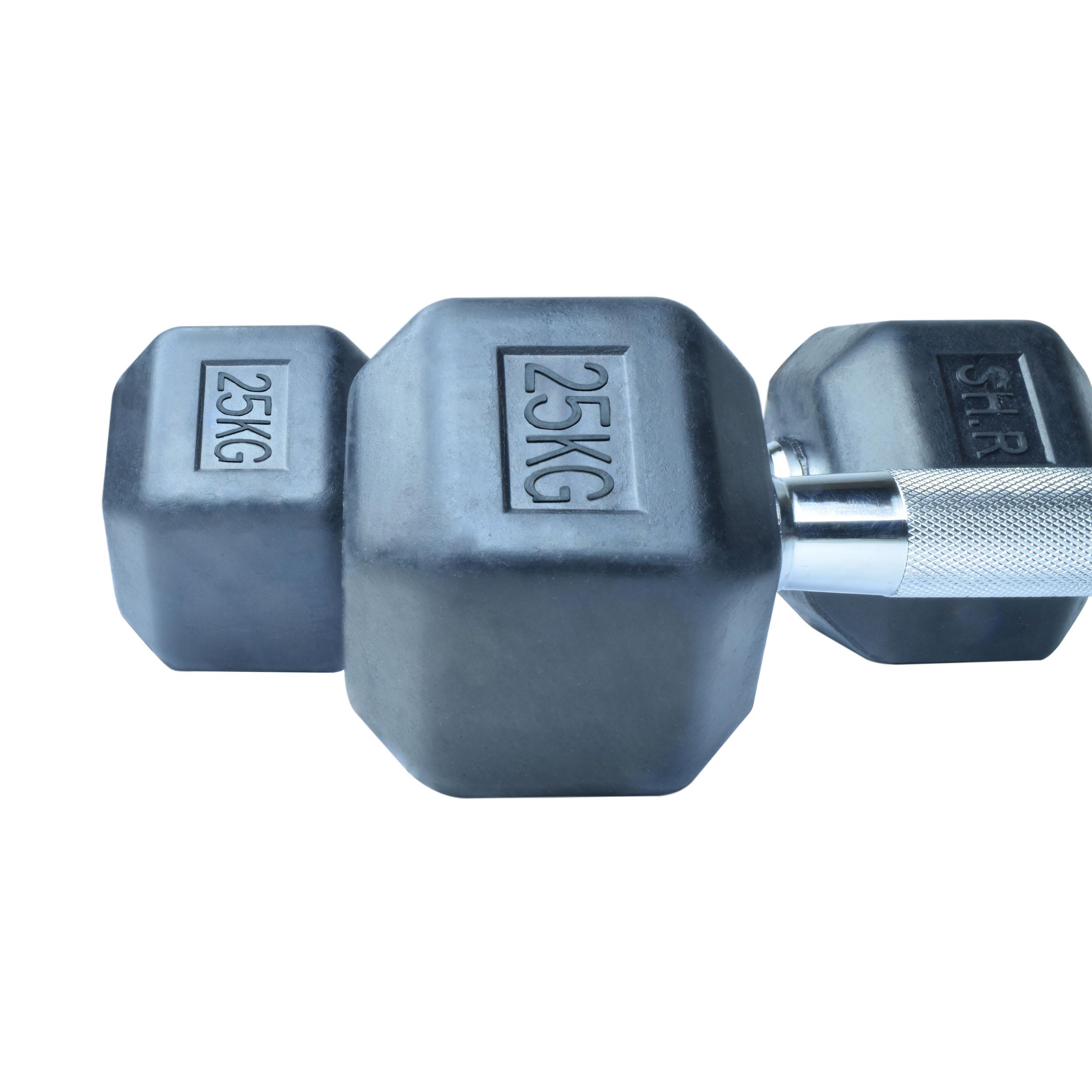 دمبل اس اچ ار کد B9 وزن 25 کیلوگرم بسته 2 عددی
