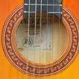 گیتار کلاسیک وفائی مدل MVo5 thumb 1