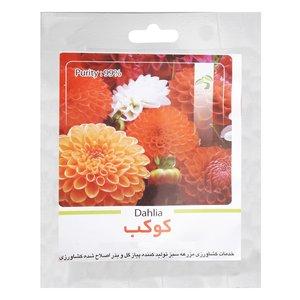 بذر گل کوکب گرین فارم کد 005