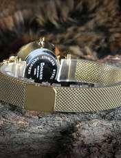 ساعت مچی عقربه ای زنانه چاکسیگو مدل CH 2360 - TA-SE -  - 2