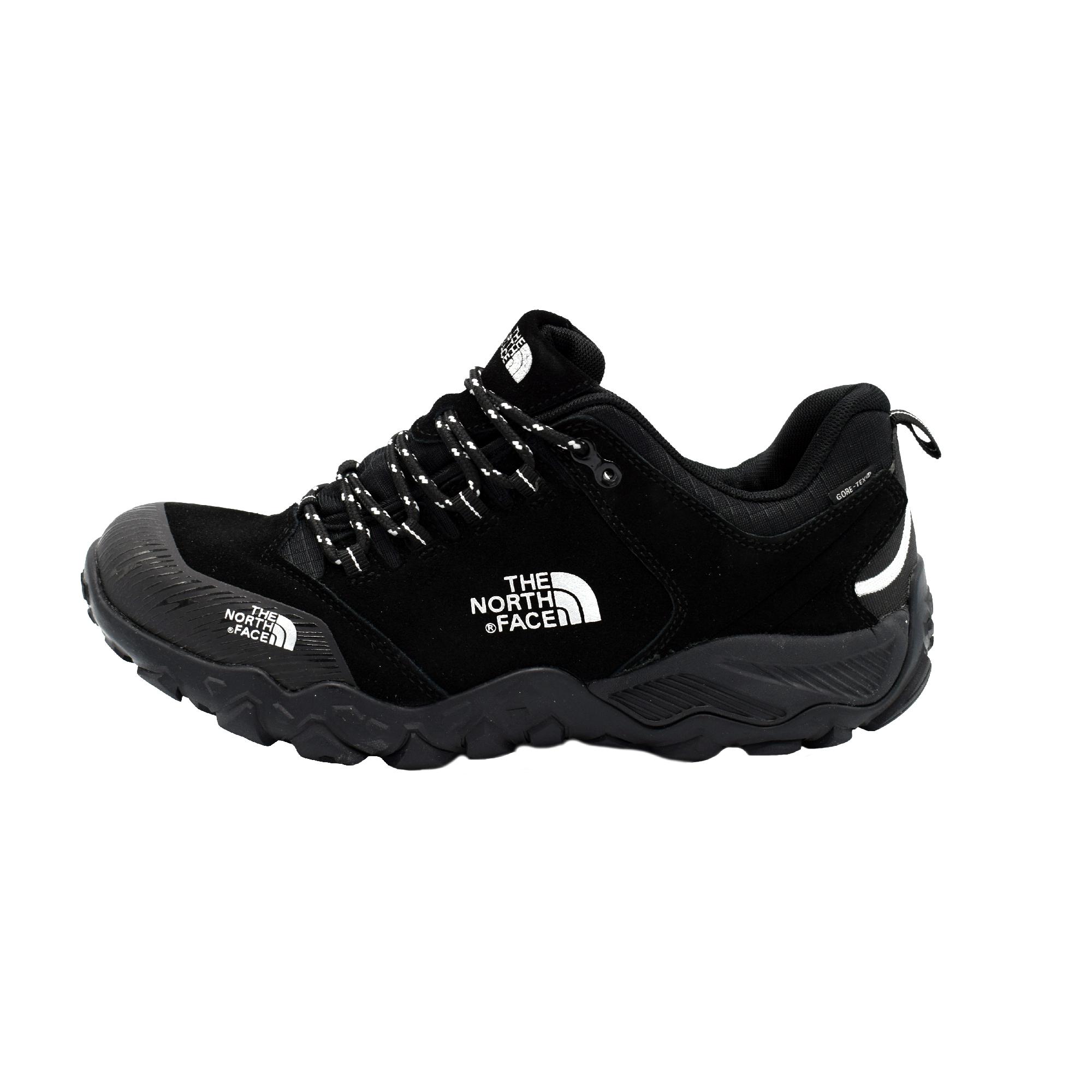 خرید اینترنتی                     کفش کوهنوردی مردانه نورث فیس مدل GORE-TEX