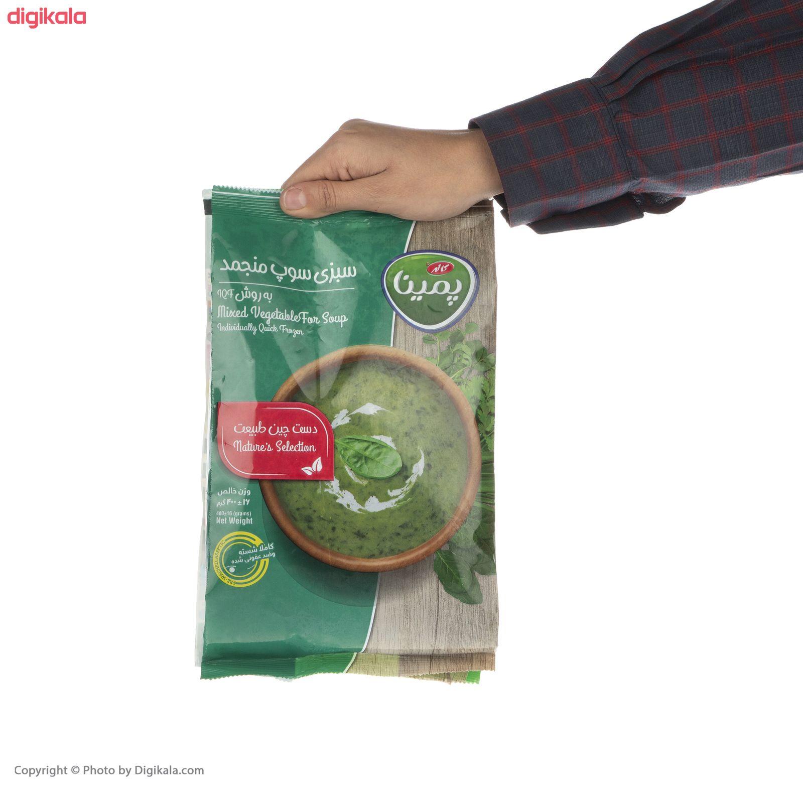 سبزی سوپ منجمد پمینا مقدار 400 گرم main 1 4