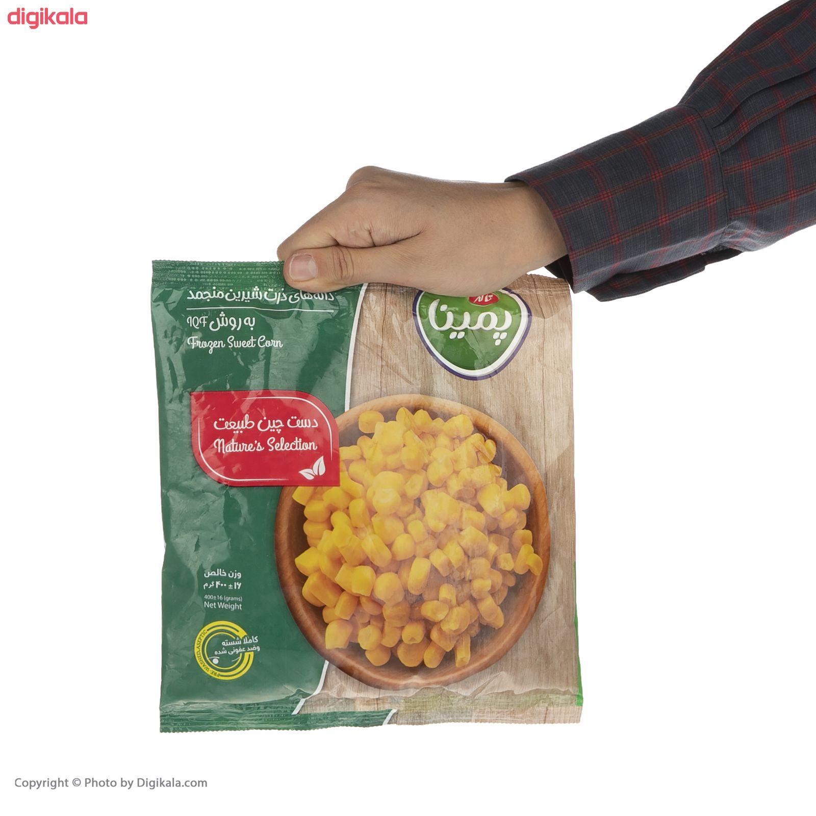 دانه ذرت شیرین منجمد پمینا مقدار 400 گرم main 1 5