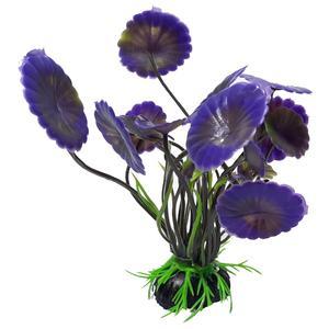گیاه تزئینی آکواریوم کد Ma08