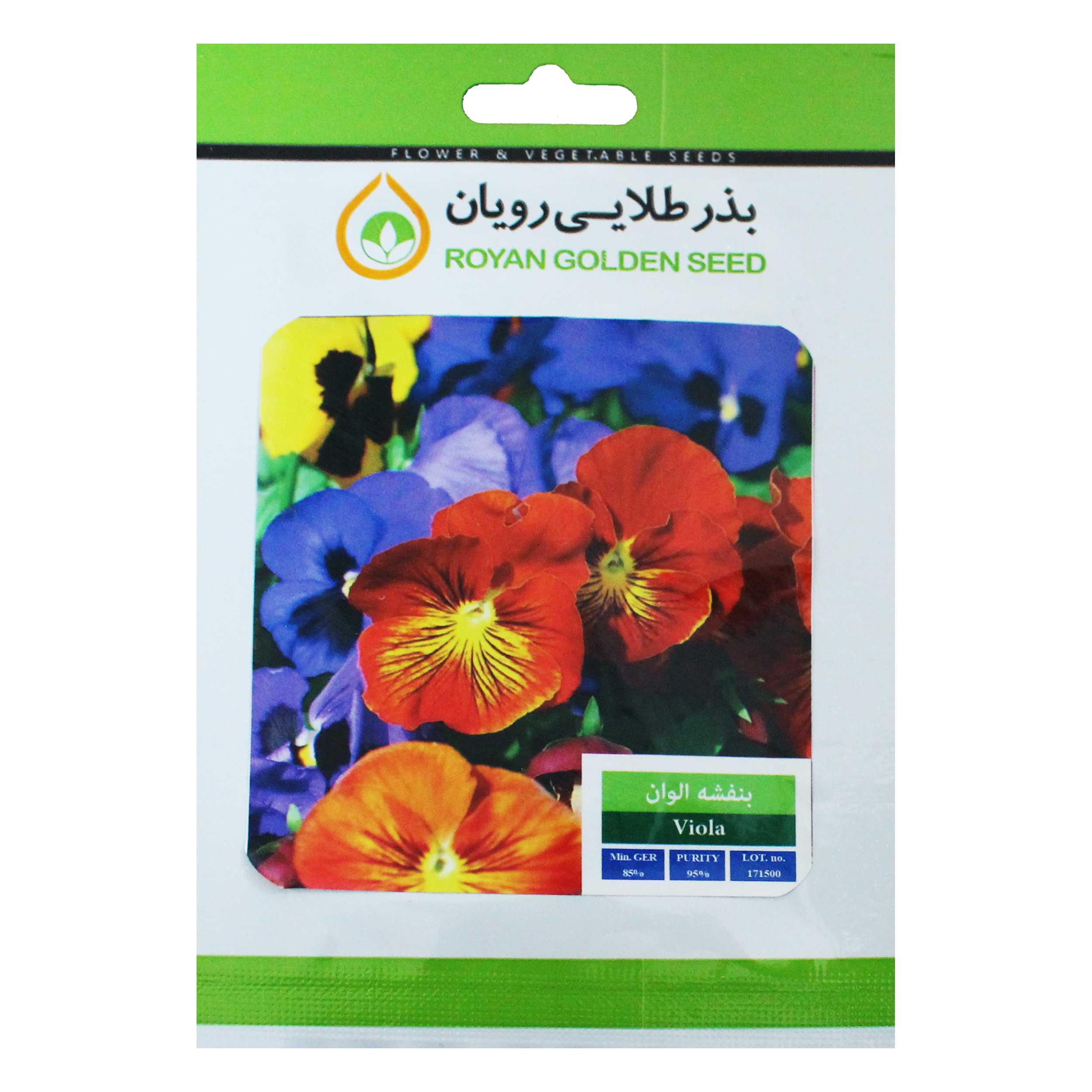 بذر گل بنفشه بذر طلایی رویان کد BZTR-008