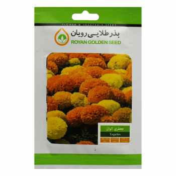 بذر گل جعفری الوان بذر طلایی رویان کد BZTR-013