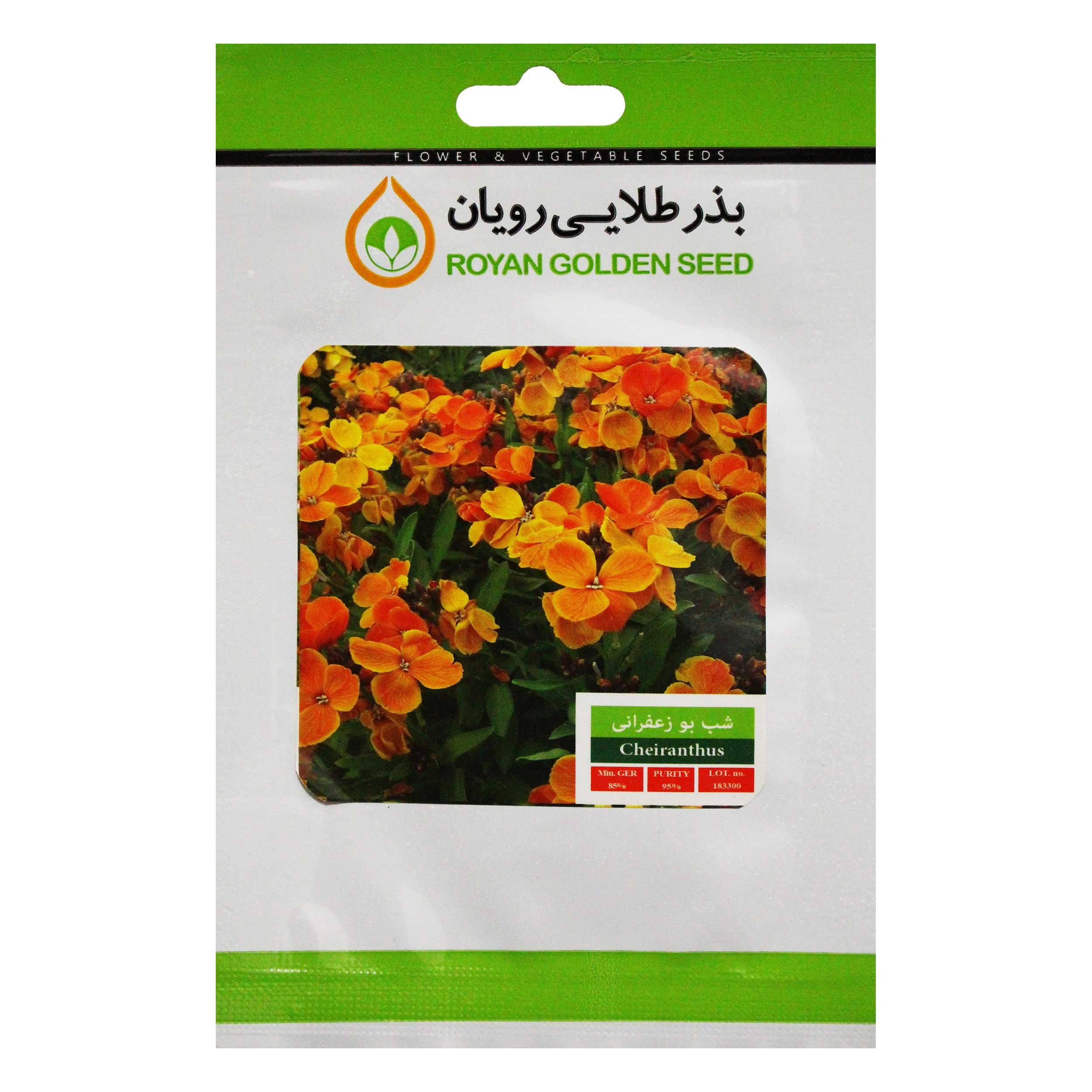 بذر گل شب بو زعفرانی بذر طلایی رویان کد BZTR-022
