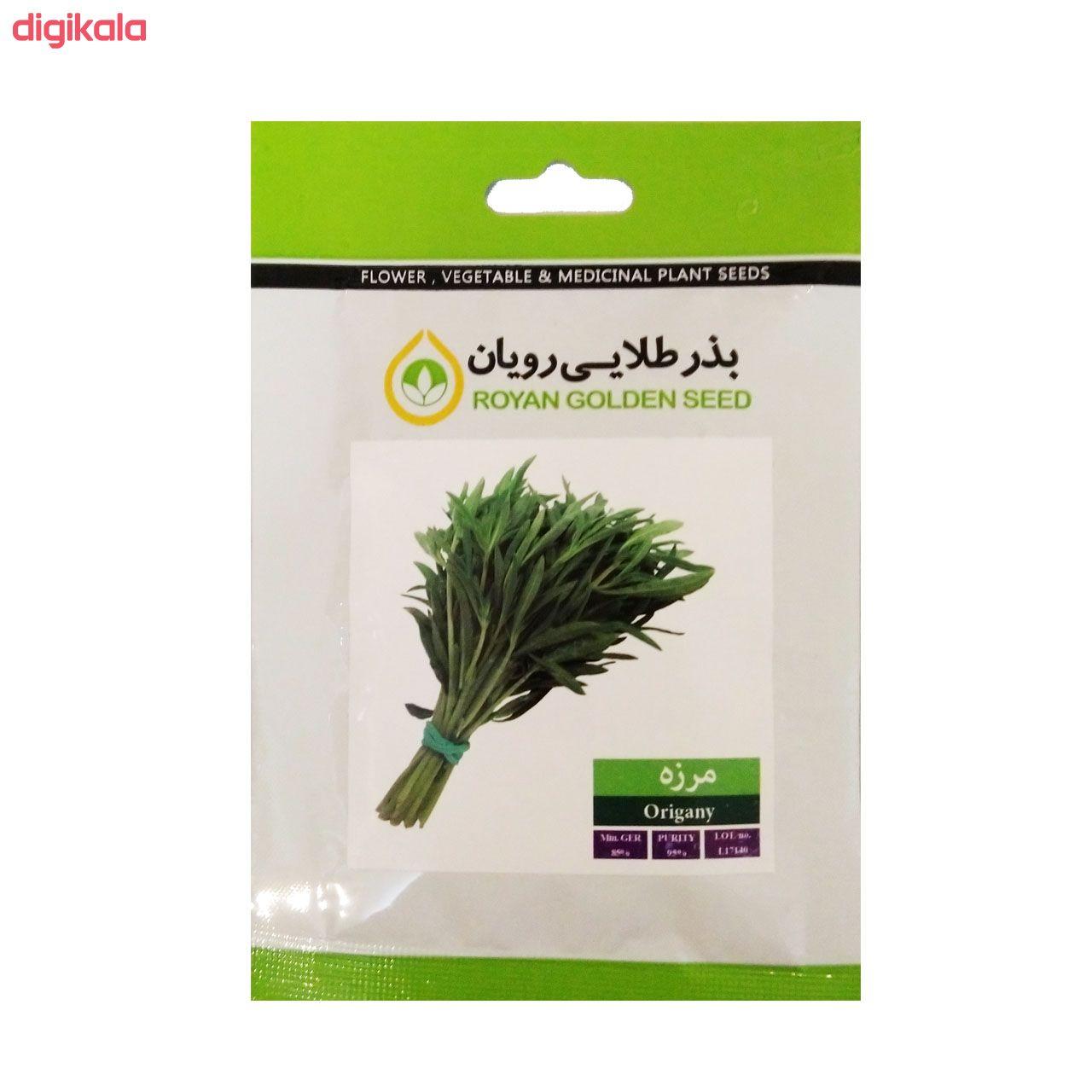 بذر سبزی خوراکی بذر طلایی رویان مدل V-P-BZTR-006 مجموعه 8 عددی main 1 3