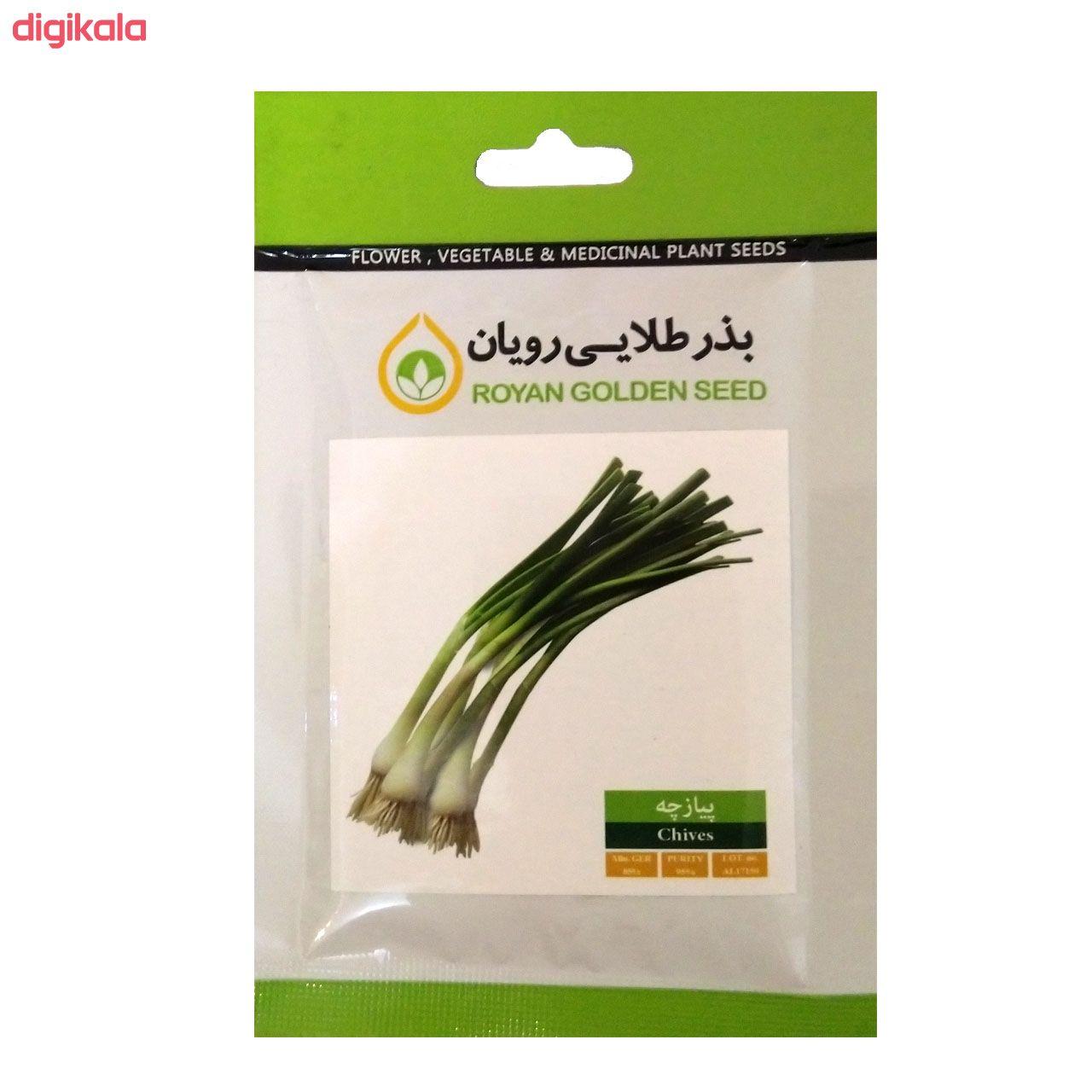 بذر سبزی خوراکی بذر طلایی رویان مدل V-P-BZTR-006 مجموعه 8 عددی main 1 4