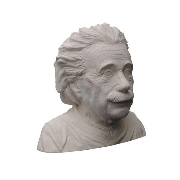مجسمه طرح آلبرت اینشتین مدل x1015