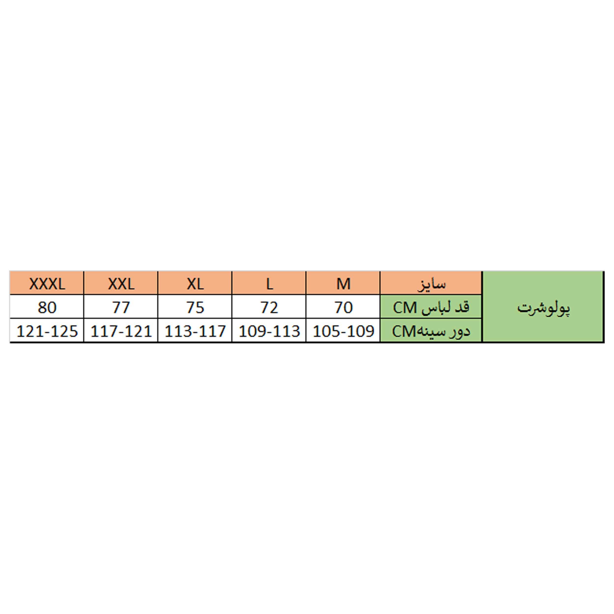 پولوشرت مردانه زی مدل 153111416ML main 1 6