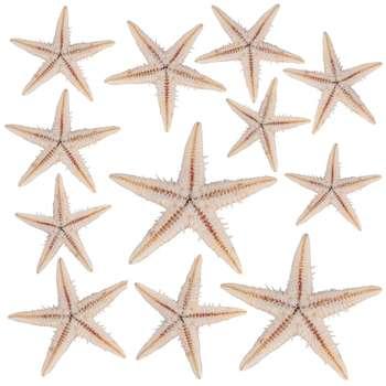 ستاره دکوری مدل riz3 مجموعه ۱۲ عددی