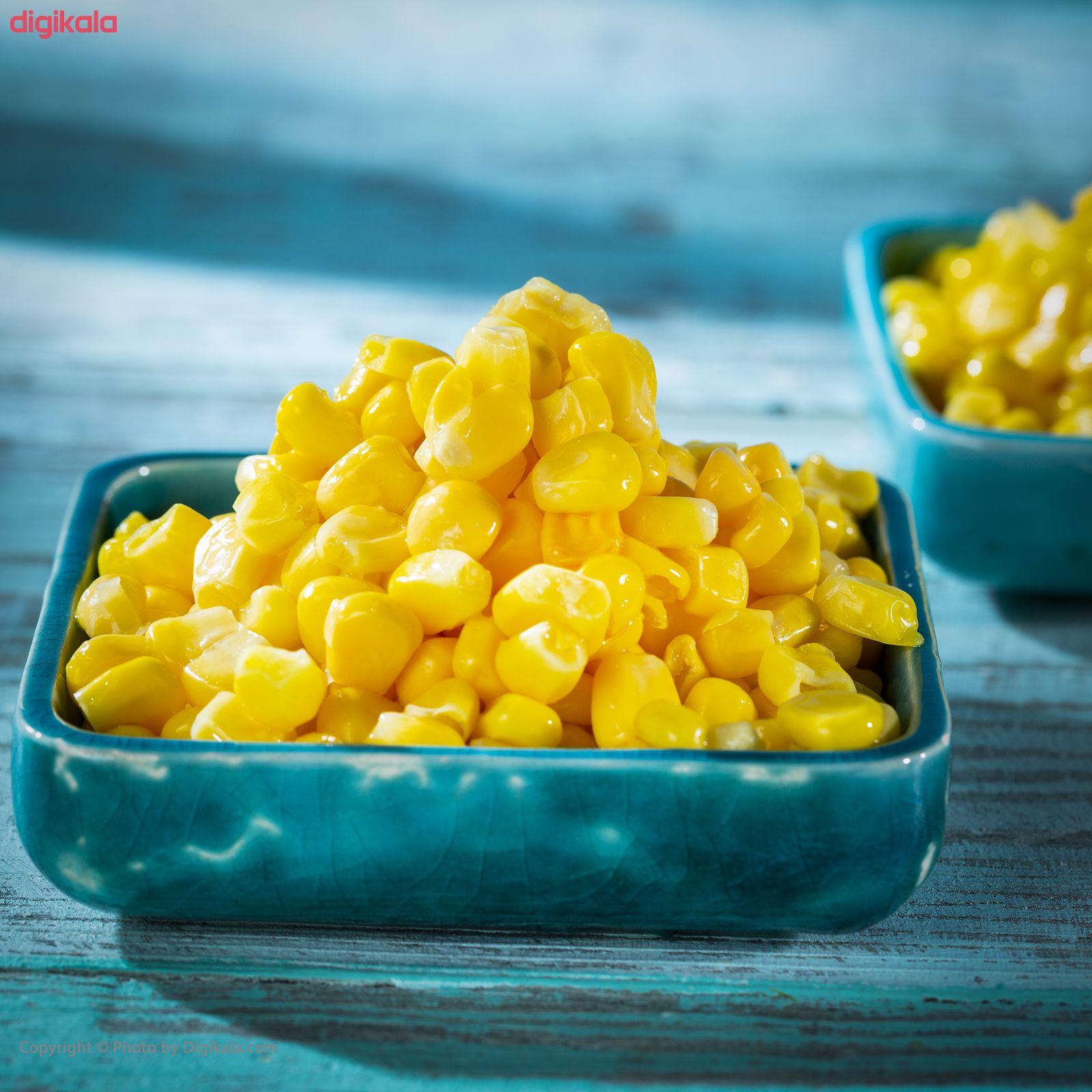 دانه ذرت شیرین منجمد پمینا مقدار 400 گرم main 1 1