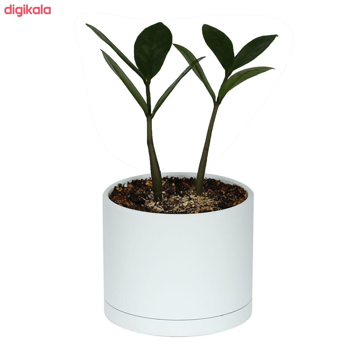 گلدان طرح استوانه مدل مهرنی 7.5-103 main 1 10