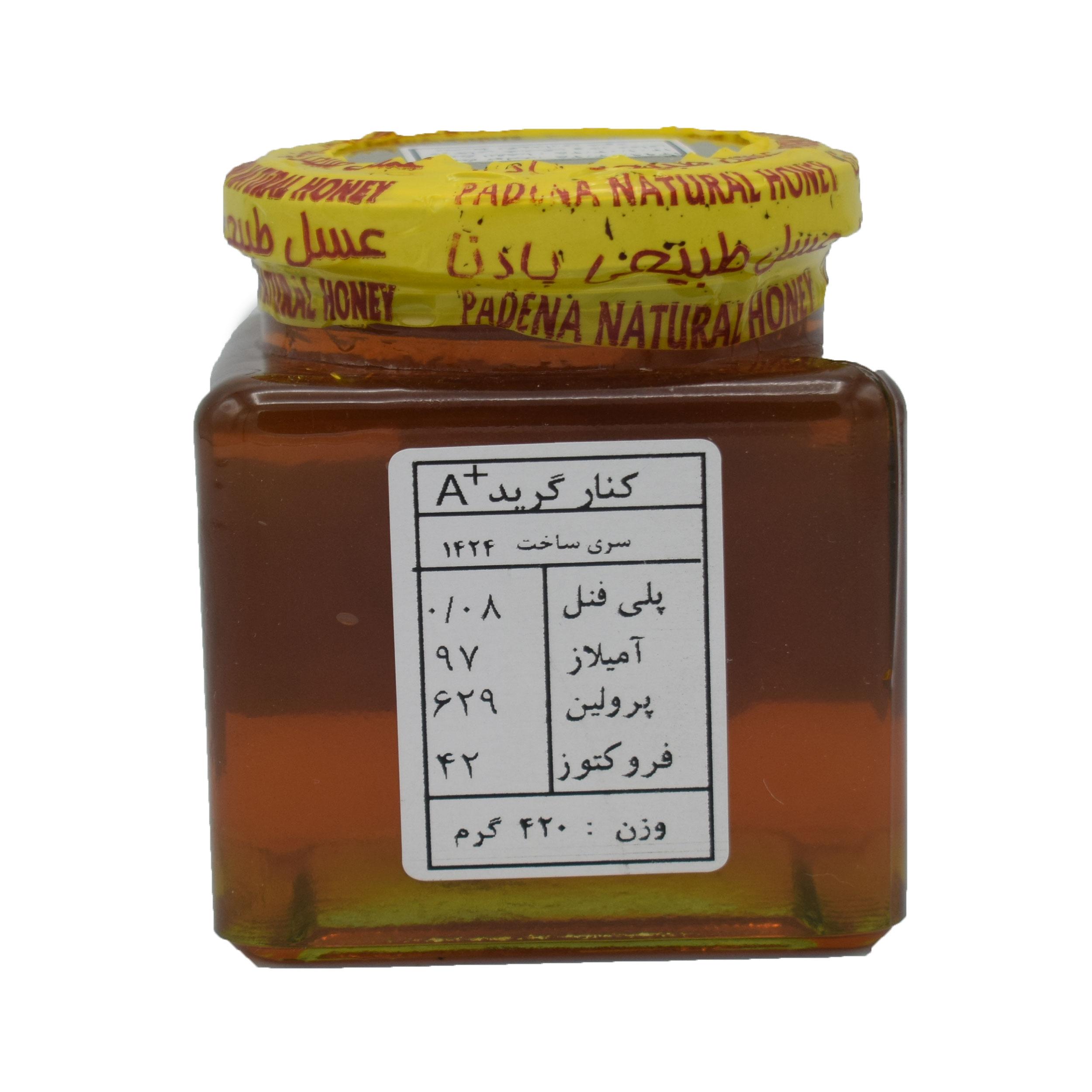 عسل کنار پادنا - 420 گرم