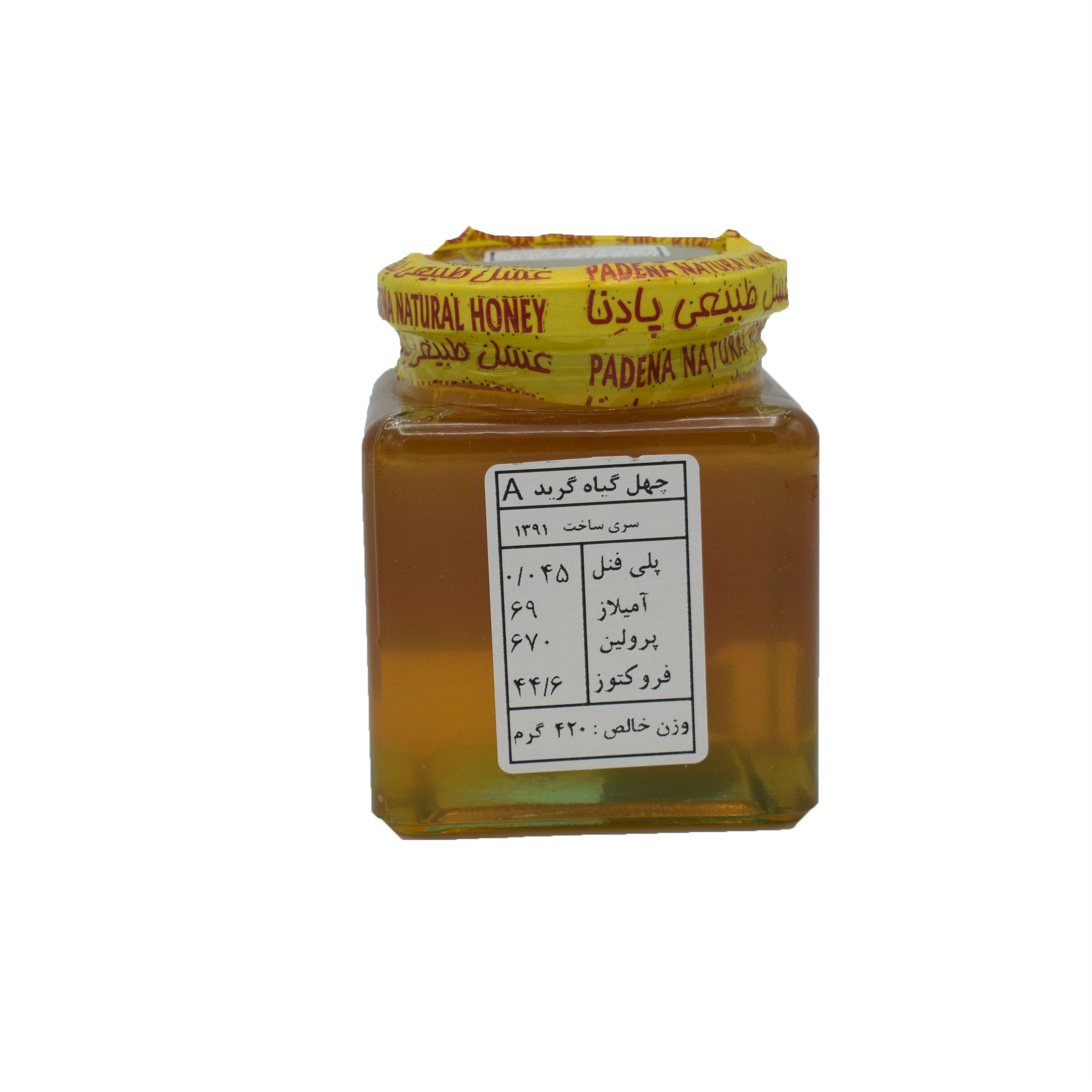 عسل چهل گیاه پادنا - 420 گرم