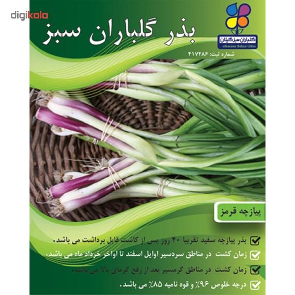 بذر پیازچه قرمز گلباران سبز main 1 2