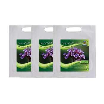 مجموعه بذر گل شاهپسند گلباران سبز بسته 3 عددی