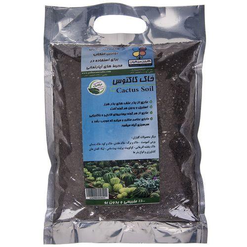 خاک کاکتوس گلباران سبز بسته 2 کیلوگرمی