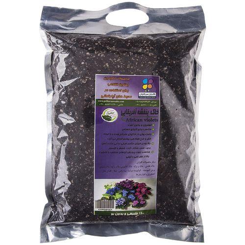 خاک بنفشه آفریقایی گلباران سبز بسته 1 کیلوگرمی