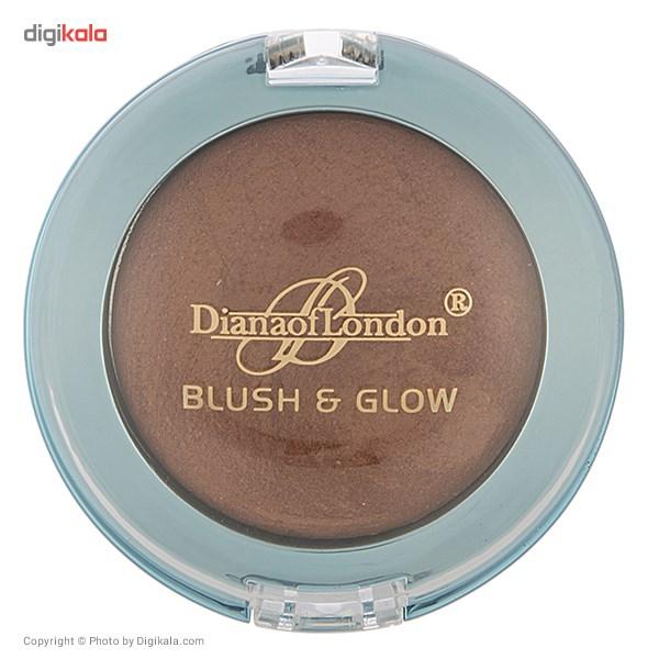 رژ گونه دایانا سری Blush And Glow  مدل Almond Browine 09