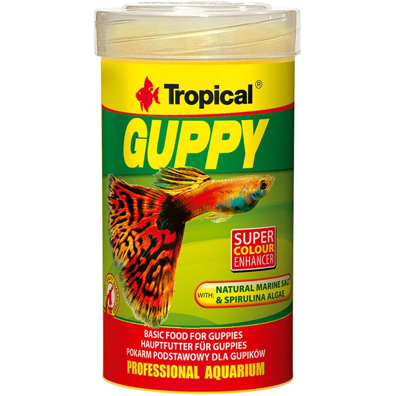 غذای ماهی تروپیکال مدل Guppy وزن 20 گرم