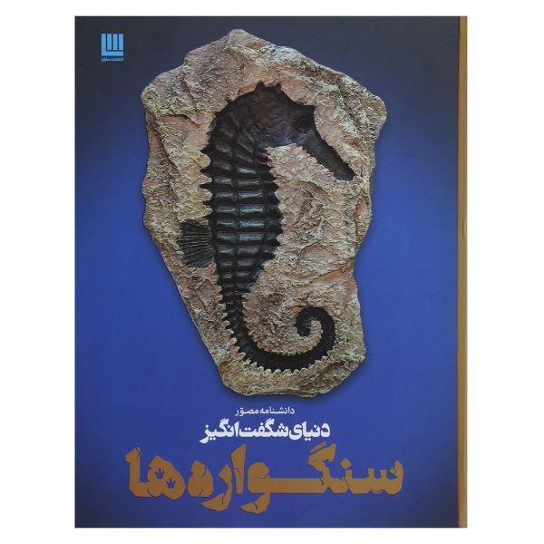 کتاب دانشنامه مصور دنیای شگفت انگیز سنگواره ها اثر پال دی تیلر