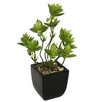 گلدان به همراه گل مصنوعی هومز  طرح کاکنوس ستاره ای مدل 60011