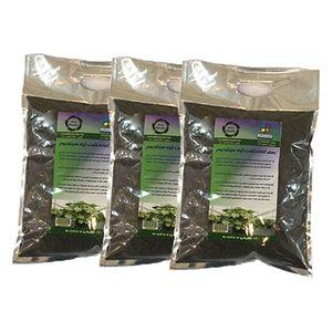 بستر آماده کشت گیاه سینگونیوم 2 کیلوگرمی گلباران سبز بسته سه عددی