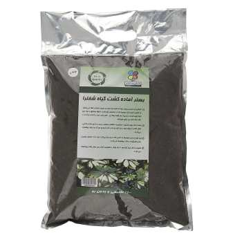 بستر آماده کشت گیاه شفلرا گلباران سبز بسته 2 کیلوگرمی