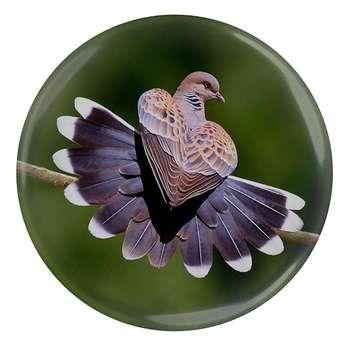 پیکسل طرح کبوتر و قلب مدل S1614