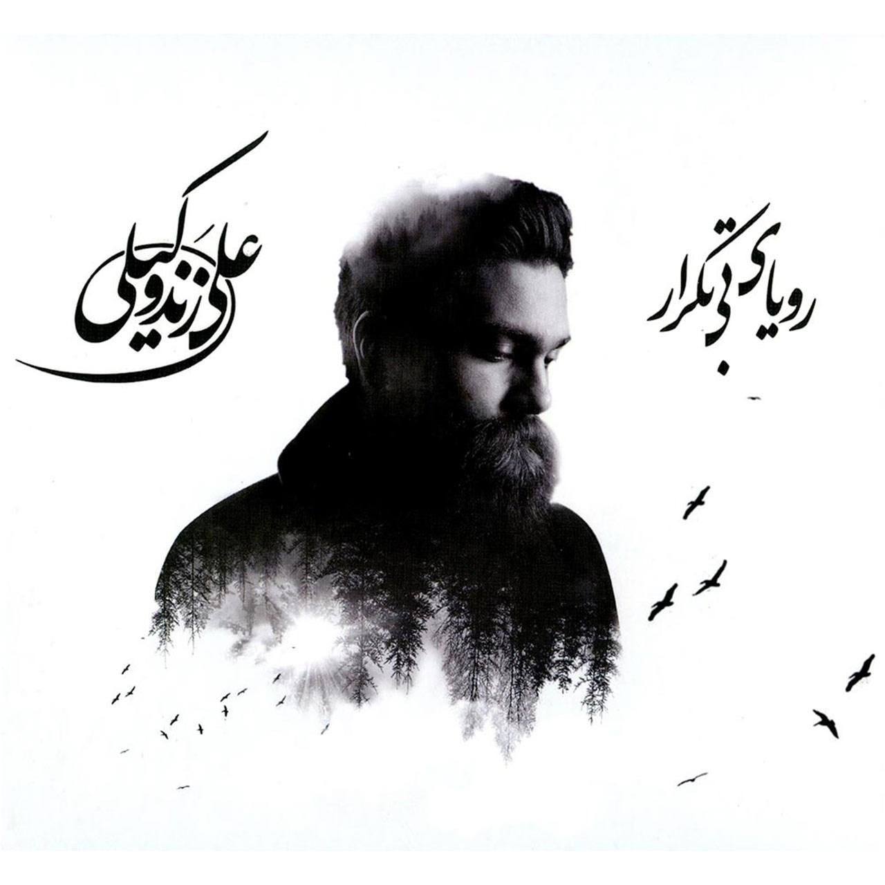 آلبوم موسیقی رویای بی تکرار اثر علی زند وکیلی - بسته بندی مقوایی