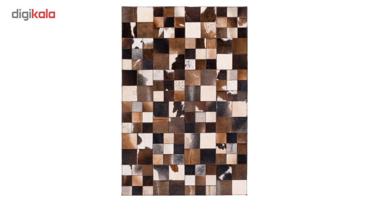 کلاژ پوست دو متری گالری سی پرشیا کد 811124