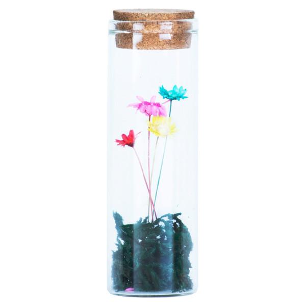 گل ماندگار به همراه گلدان شیشه ای عرش مدل B-119