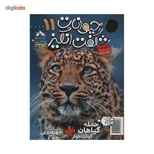 مجله حیوانات شگفت انگیز - شماره 11