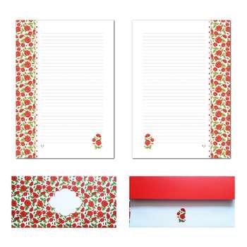 کاغذ یادداشت و پاکت نامه ملخی ستوده کد sbox035 سایز A4 بسته 20 برگ و 10 پاکت