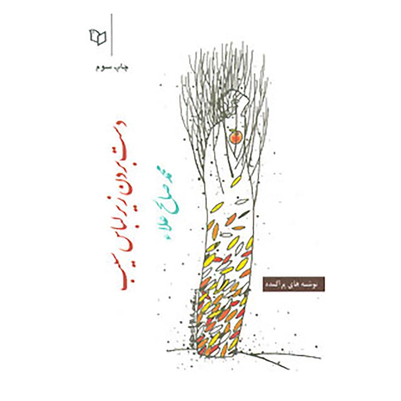 خرید                      کتاب دست بردن زیر لباس سیب اثر محمد صالح علا