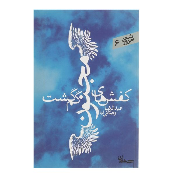 کتاب کفش های مجنون گم گشت اثر عبدالرضا رضایی نیا