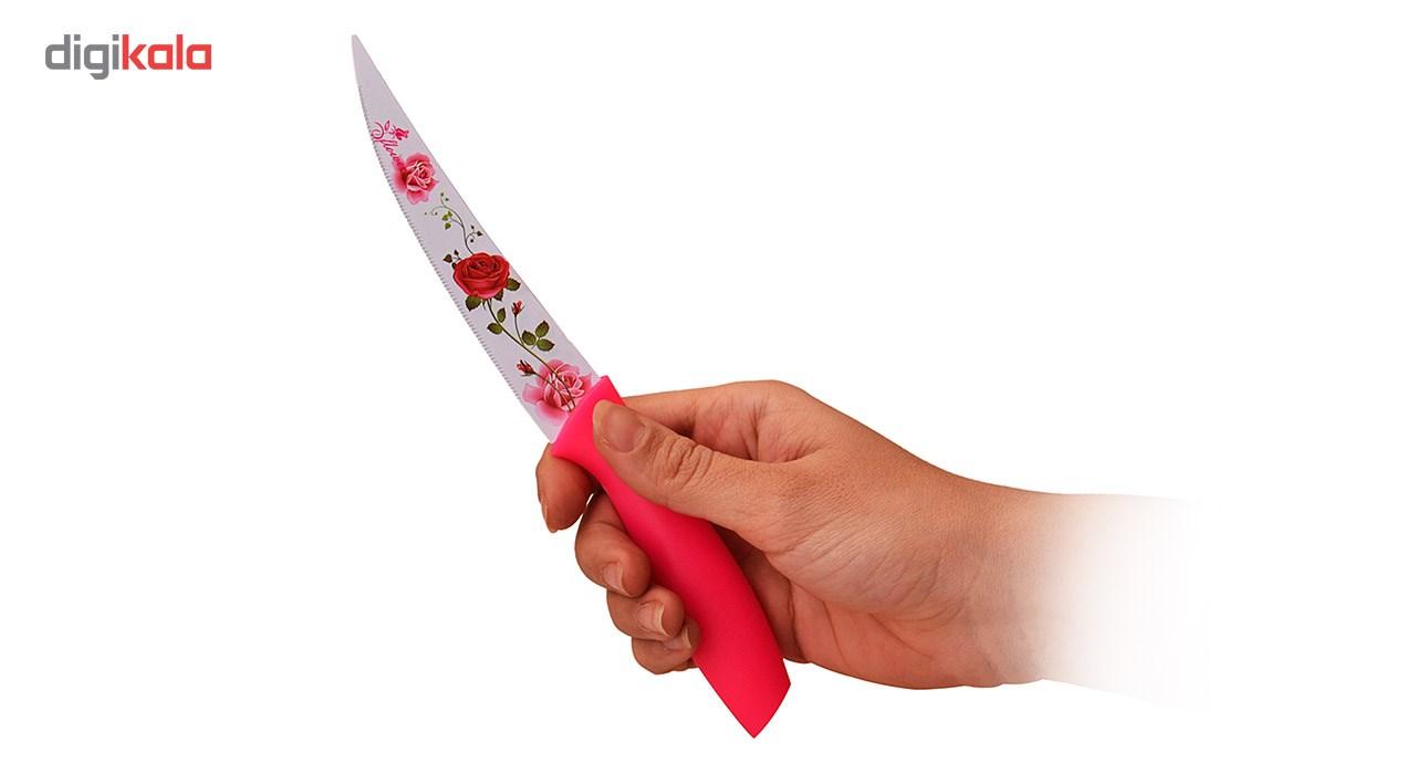 چاقوی رجینال مدل P002-2 بسته دو عددی