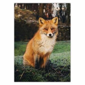 تابلو شاسی ونسونی طرح Brown Fox سایز 30 × 40 سانتی متر