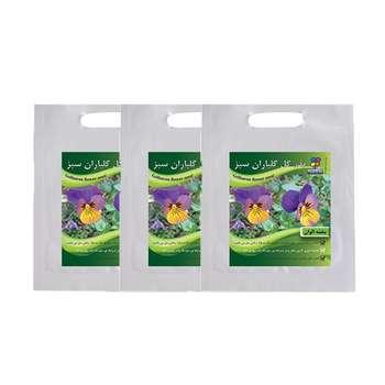 مجموعه بذر گل بنفشه الوان گلباران سبز بسته 3 عددی
