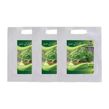 مجموعه بذر بادرنجبویه گلباران سبز بسته 3 عددی