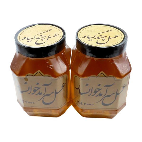 عسل طبیعی سرآمد چند گیاه - 2 کیلوگرم بسته 2 عددی