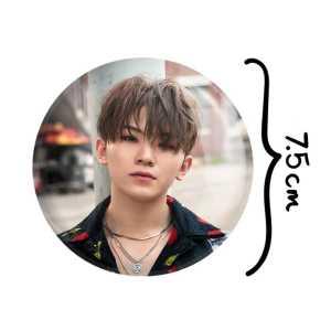 آلبوم موسیقی رسوای دل اثر محمدرضا شجریان
