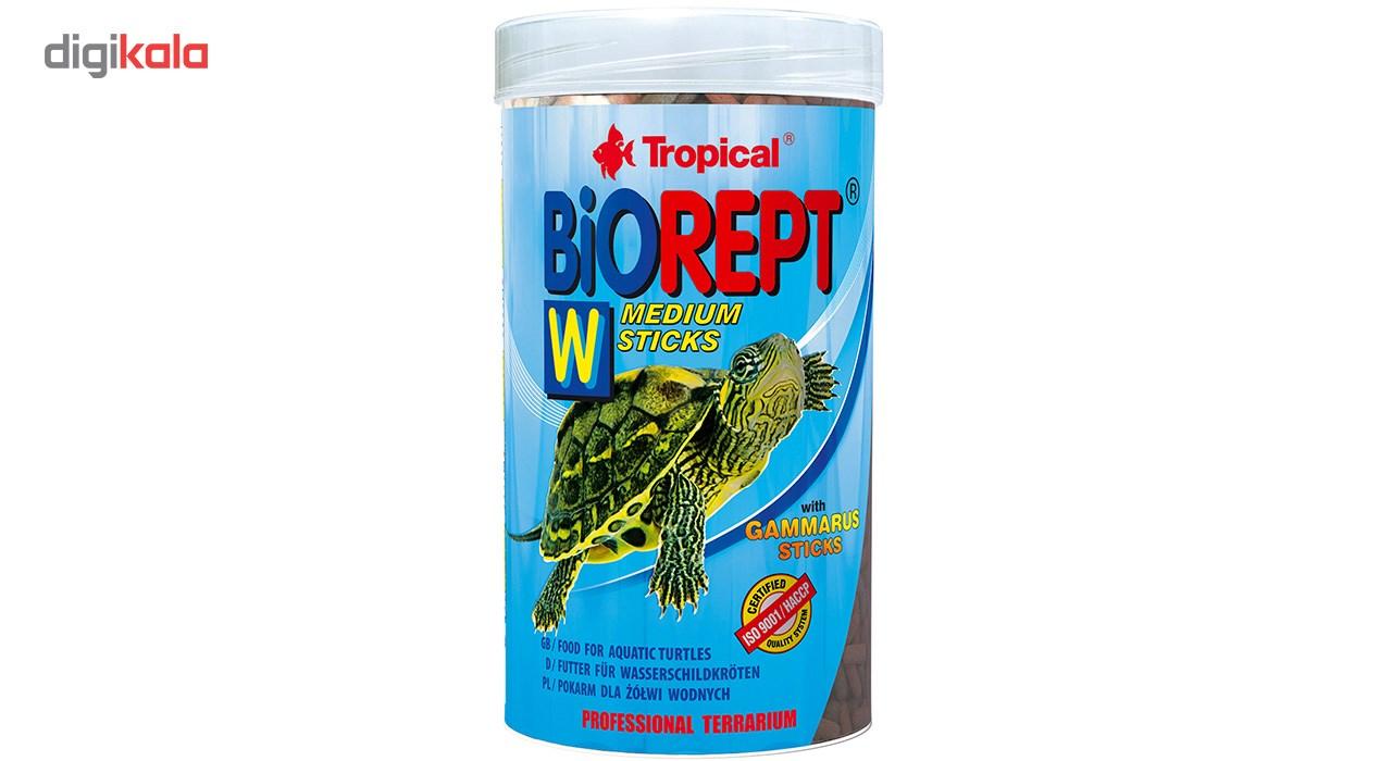 غذای لاک پشت تروپیکال مدل Biorept W وزن 75 گرم